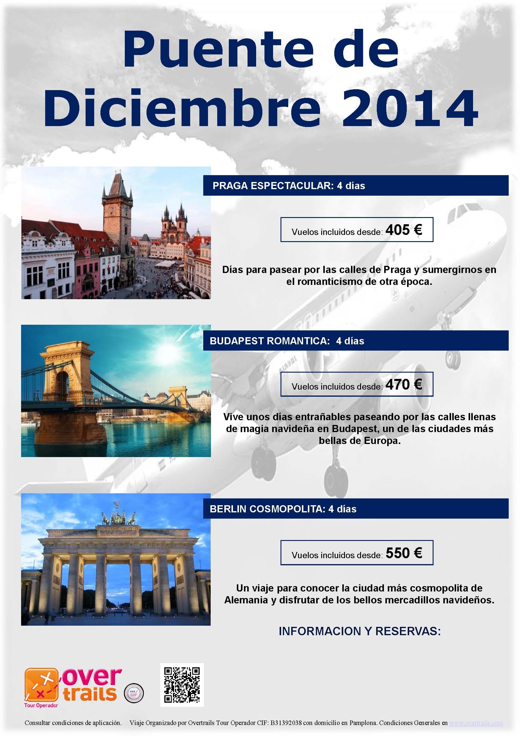 PUENTE DE DICIEMBRE 2014